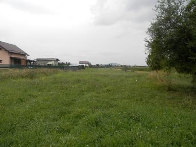 Vand teren agricol intravilan, intre case Podu Oltului