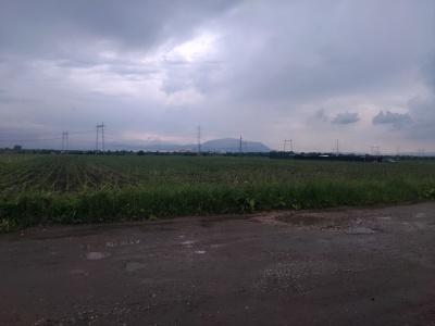 Teren 32100 mp Sanpetru